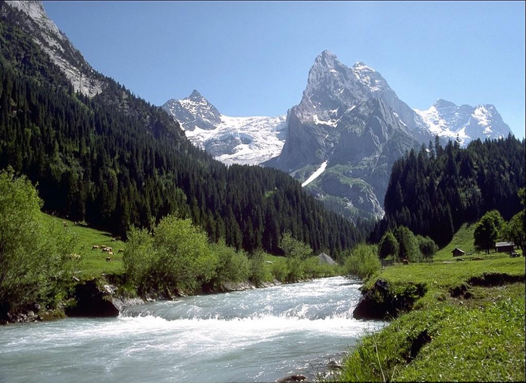 mountain_stream
